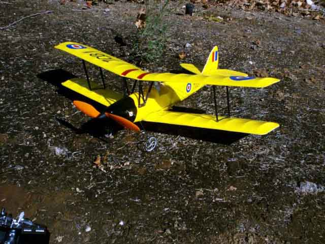 You are browsing images from the article: My adventures with Tiger Moth